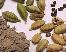  (Cardamom)